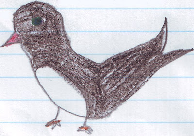 Desenho de uma andorinha