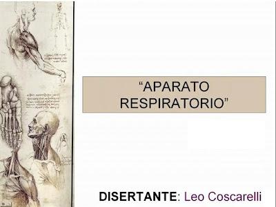 Yacko Kaiser\'s Blog: Anatomía del Aparato Respiratorio