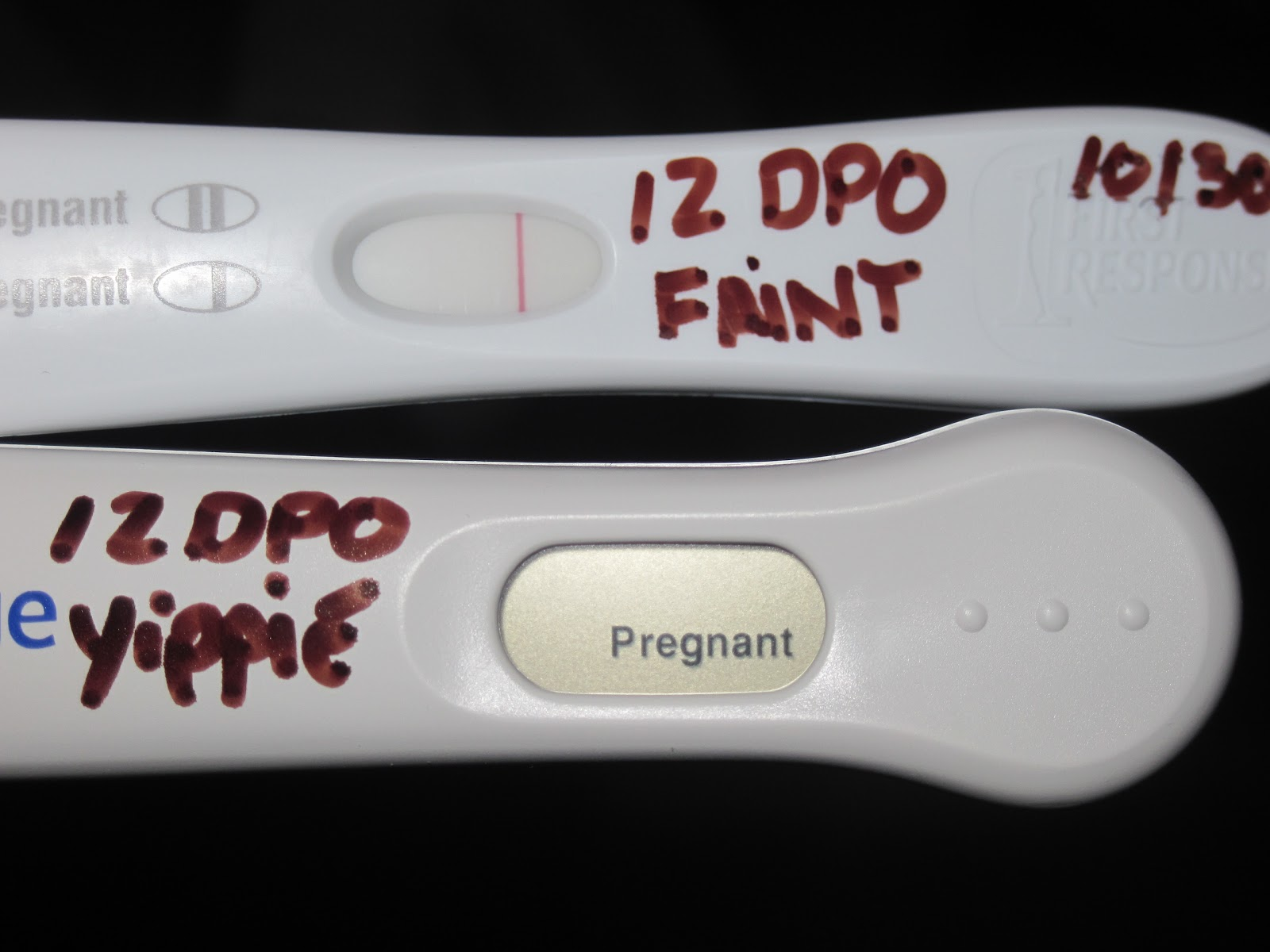 First Response Pregnancy Test Negative