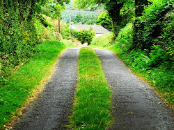 Helen Keller Goat Path in Goatenbridge, Co. Tipperary.