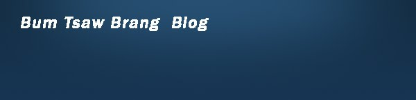 BBUMTSAW.BLOGSPOT.COM