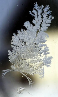 Snow Art Seen On www.coolpicturegallery.us