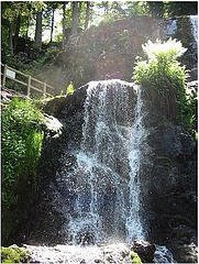 Cascade de Tendon