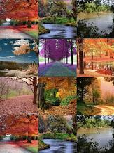 Maravilha de Natureza!