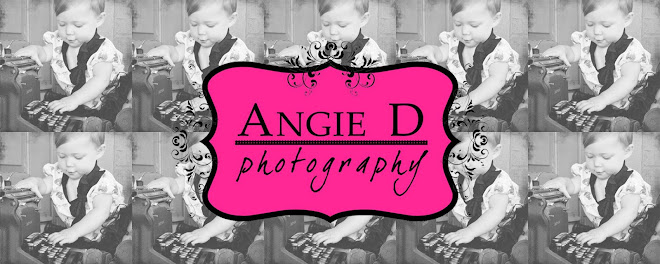 Angie D Photography