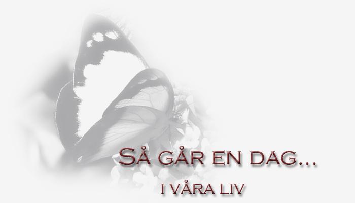 : Så går en dag i våra liv :