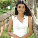 Sexy South Indian Young Actress Shriya Jha Exclusive Photo Gallery...