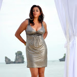 Hottest Pics Of Sexy South Indian Babe Namitha In Silver Colored  Dress From The Latest Telugu Cinema Billa   Exclusive Hq Photos Gallery...