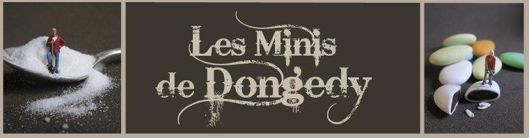 Les minis de Dongedy