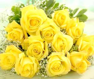 الورد ينحني جماله^_^ favourites2.jpg
