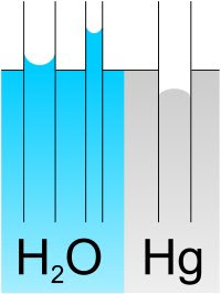 Comparativa de capilaridad entre agua y mercurio
