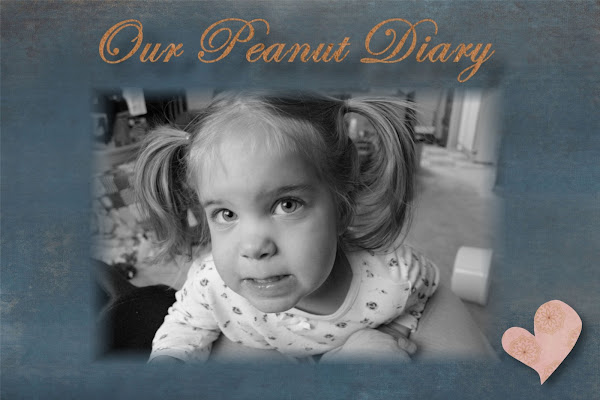 Our Peanut Diary