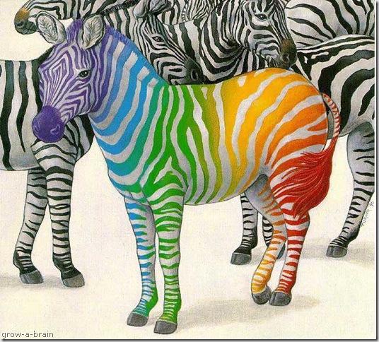 animal print backgrounds for desktop. desktop wallpaper zebra print.