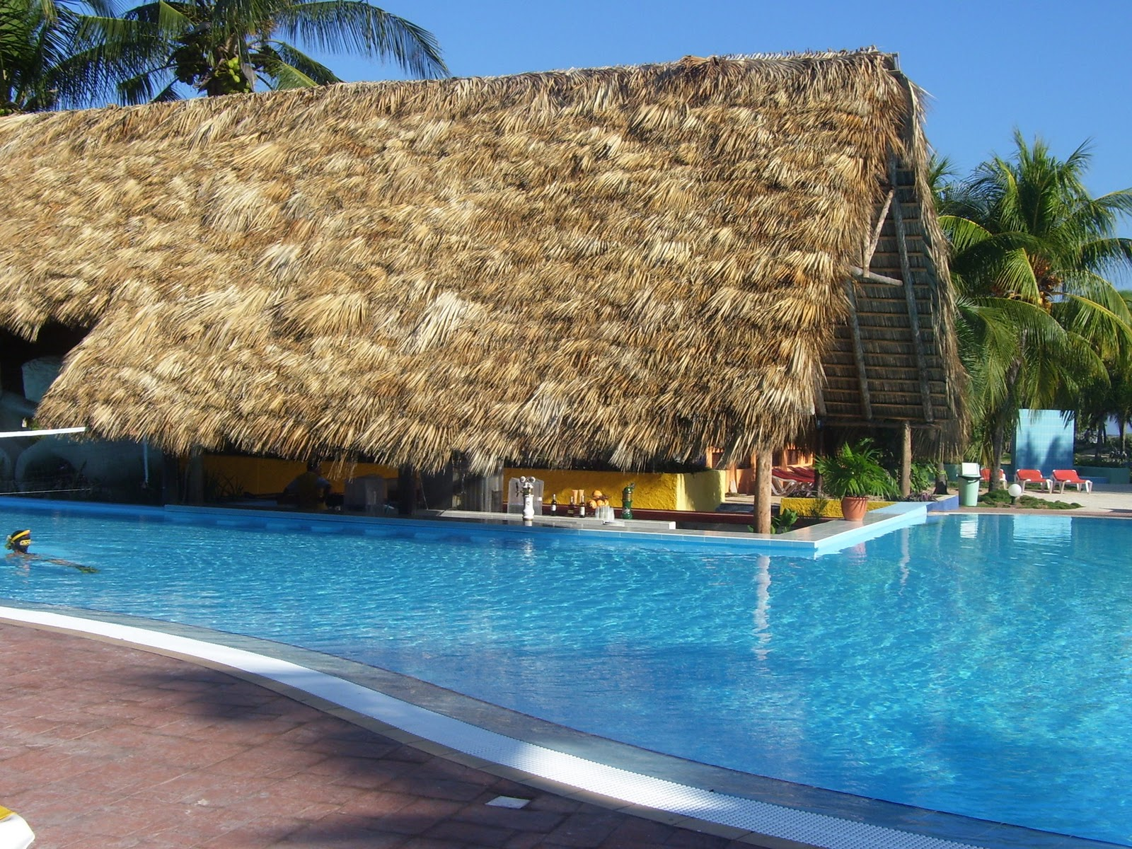 Pool With Swim Up Bar At Brisas Santa Lucia