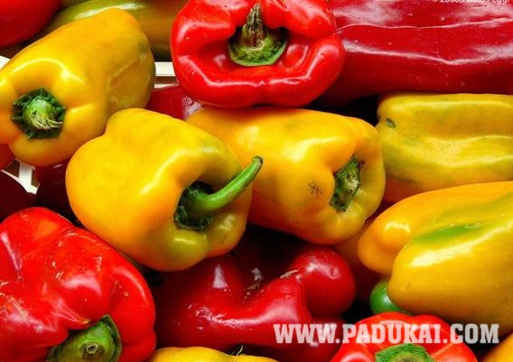 Win Min Colorful Fruits And Vegetables Wallpapers