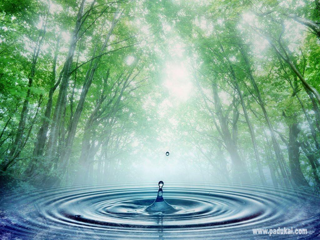 beautiful water wallpaper - www.
