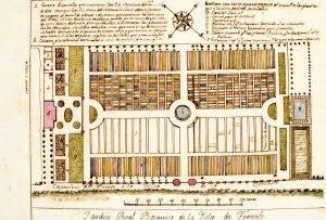 Puerto de la cruz sus gentes y sus cosas el jard n bot nico for Jardin botanico ucm