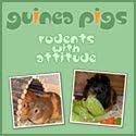 guinea pig site