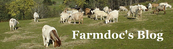 farmdoc&#39;s blog