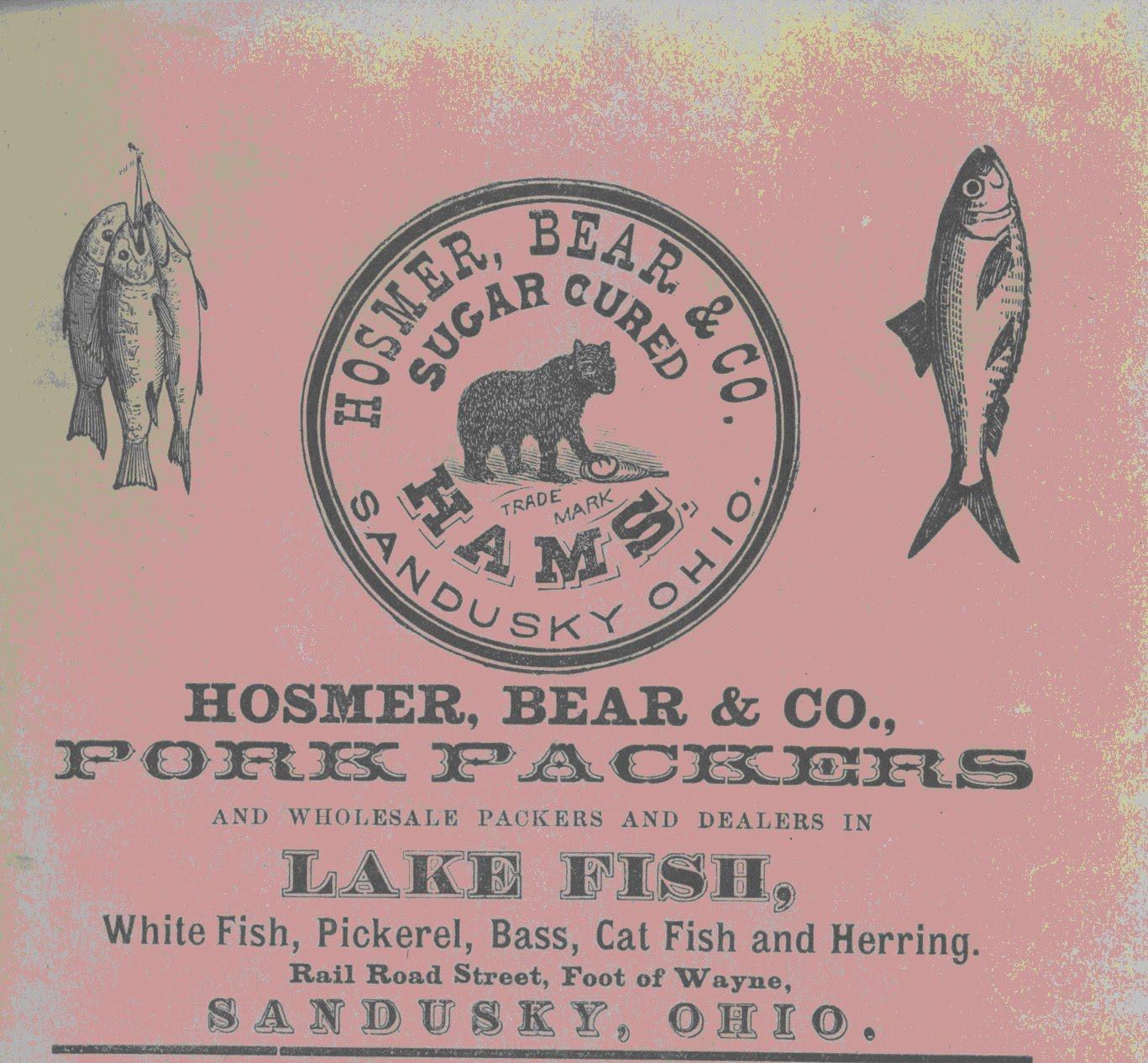 http://3.bp.blogspot.com/_FqSB7xk--1s/S8h0KtDKGtI/AAAAAAAABpo/xl6_IAEQFb0/s1600/Hosmer+Fish.jpg