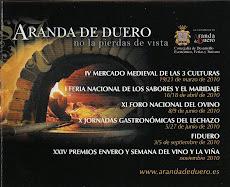 Página del Ilmo. Ayuntamiento de Aranda de Duero