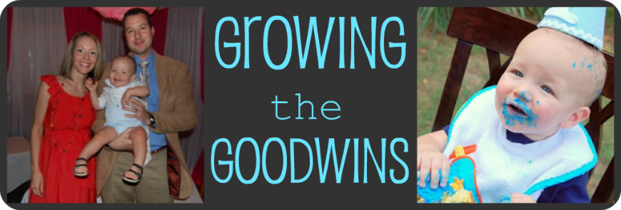 growing the goodwins