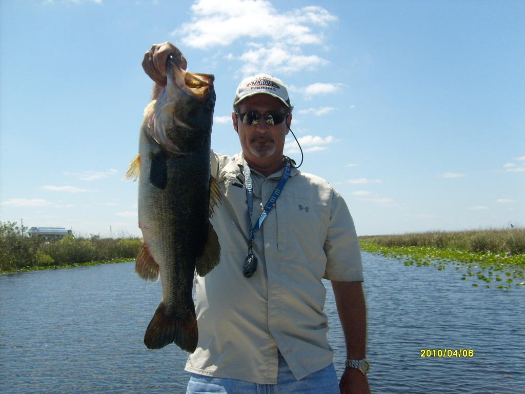 South florida bass fishing florida everglades bass fishing for Bass fishing in florida