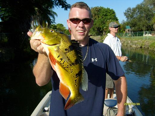 South florida bass fishing florida peacock bass guide service for Best bass fishing in florida