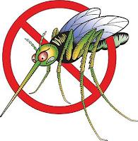 http://3.bp.blogspot.com/_FuMNspNx9_Q/TBMN5VyU2GI/AAAAAAAAARM/7YHvA5n5mD0/s1600/mosquito_color.jpg