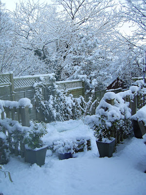 Deep snow on the deck and steps leading down to the gravelled area and veg plot. December 2010 in South Wales.