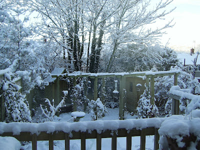 Another snow view of my back garden in Wales - December 2010.
