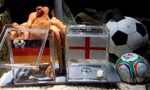 paul the octopus germany vs england
