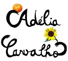 O Blog da Adélia Carvalho