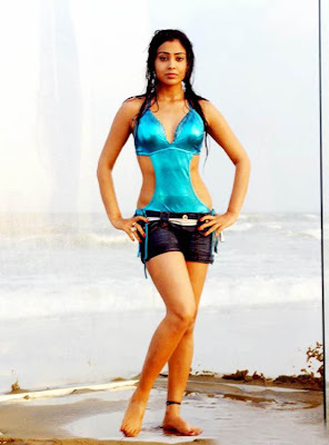 http://3.bp.blogspot.com/_FylGS8_9K7U/Sg7kcgkIS5I/AAAAAAAATbg/Sdmwbu870wc/s400/actress-shriya-saran-hot-stillsactress-shriya-saran-hot-imagesactress-shriya-saran-hot-photo-gallery-5.jpg