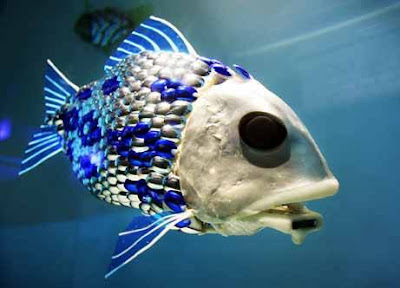 Fresh pics rarest fishes in the world for Coolest fish in the world