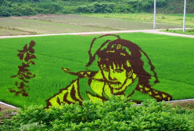 Japanese Rice Paddy Art 2010