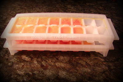 Frozen Eggs in Ice Cube Trays Thoughts of THAT Mom