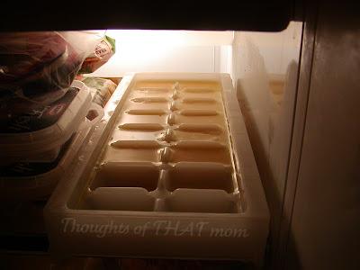 Scrambled Eggs in the Freezer