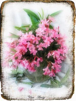 натюрморт с цветами, Uma Barzy