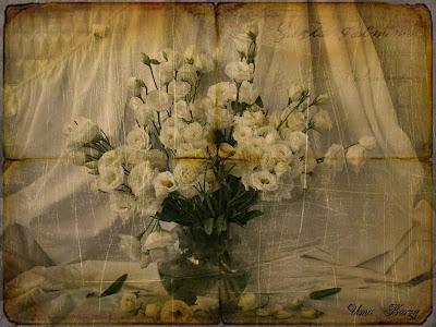 натюрморт с белыми цветами