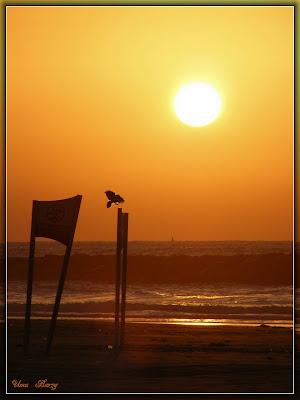 закат, пляж, море, sunset