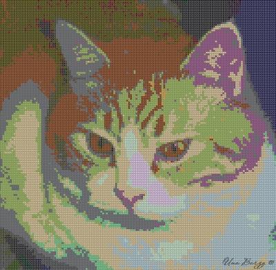 фотография кота, вышивка, программа