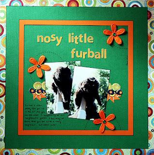 nosylittlefurball.jpg