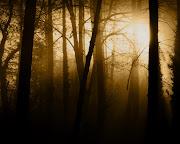 . wierzchowca Kelegorma jednym susem skoczył na pędzącego konia Kurufina. (ciemny las)
