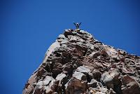 El Oso en la cumbre (5700m)
