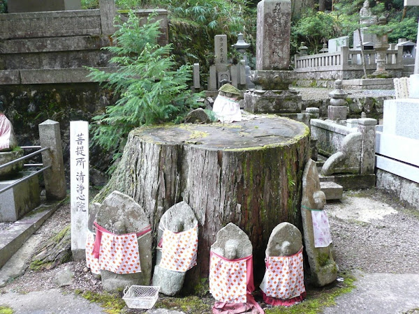 Okunoin Tree with Jizo