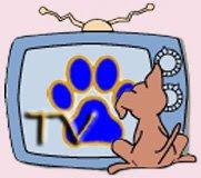 Hasi & Asha TV