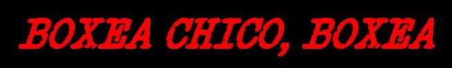 BOXEA CHICO BOXEA