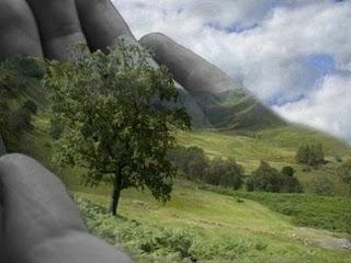 http://3.bp.blogspot.com/_G2znYCsh8ew/S-8opFSFCqI/AAAAAAAAAxY/uNOGh3RfGd4/s1600/ecologia.jpg