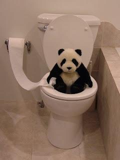 http://3.bp.blogspot.com/_G3Yh8LNSELw/SWvnfmP39cI/AAAAAAAABPM/m4qvSJzF5Sg/s320/Panda+on+toilet.jpg